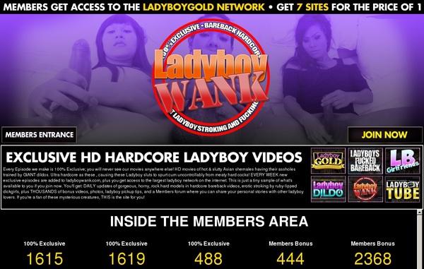 Ladyboywank.com Vids