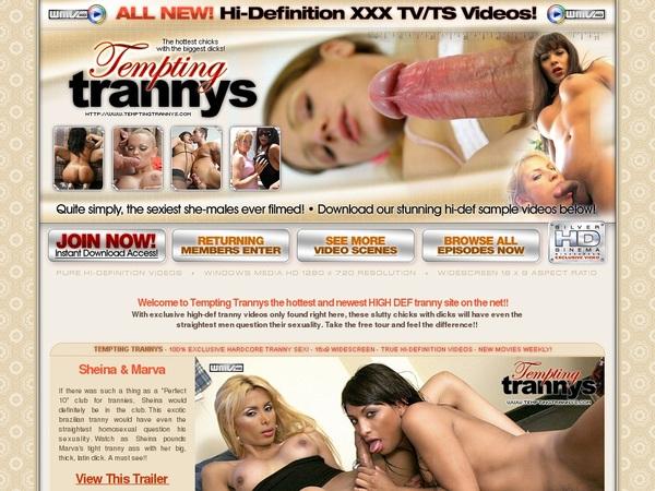 Temptingtrannys.com Segpay